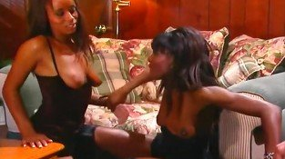 Two Ebony Babes Share a White Dick